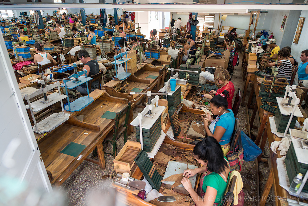 Cigar rollers (torcedores) in a tobacco factory in Santa Clara in central Cuba.