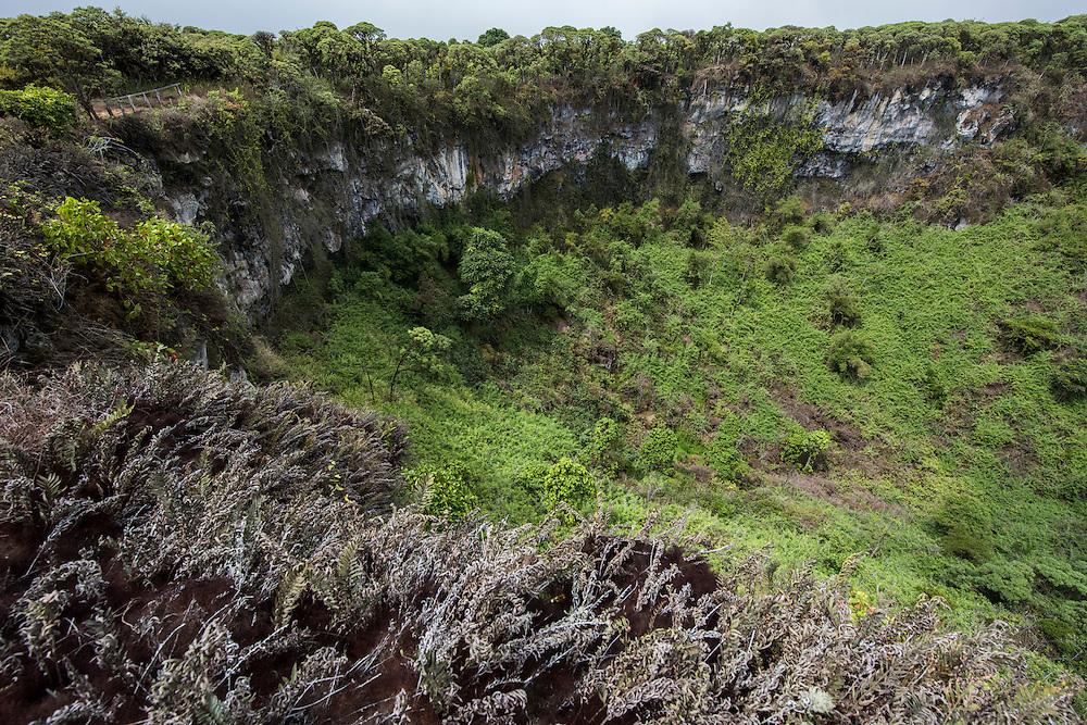 Los Gemelos (The Twins)<br /> Santa Cruz Highlands<br /> Galapagos<br /> Ecuador, South America