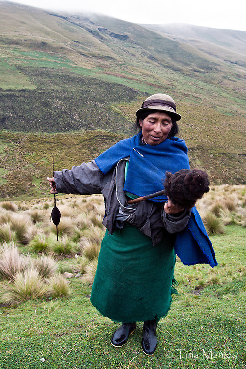 ECUADOR, LA SIERRA:  Quechua shepherd woman spins wool while she watches her sheep in the Andes Mountains of Ecuador.