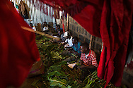 Young men, many chewing Khat, pack boxes of the drug for shipment to the UK in a small warehouse in in Eastleigh, a Somali neighborhood in Nairobi.
