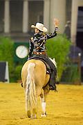 Anky van Grunsven - Whizashiningwalla BB<br /> FEI European Championships Aachen 2015<br /> © DigiShots