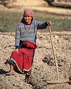Farmer in the Dhulikhel region of Kathmandu valley, Nepal. The wooden hammer is used to reduce the lumps of the soil that are created by the plow.