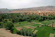 Morocco, Todra Gorge (Wadi Todra) Houses