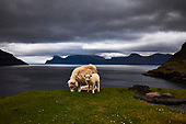 Faroe Islands @Photo18 Exhibition