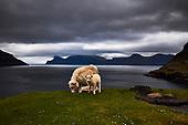 Faroe Islands @Photo18 Exhibition