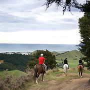 People enjoying a horse ride around the countryside at Happy Valley Adventures, Cable Bay Road. Nelson, New Zealand. 30th January  2011. Photo Tim Clayton.