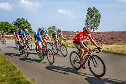 Peloton during the Arnhem - Veenendaal Classic at Posbank, Rheden, Gelderland, The Netherlands, 21 August 2015.<br /> Photo: Thomas van Bracht / PelotonPhotos.com