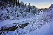 Elva Tya i Tydal i Trøndelag. Den er ei sideelv til Nea og er 16,3 kilometer lang. Elva renner i nordvestlig retning fra Stuggusjøen i Stugudal til Ås i Tydal, hvor den munner ut i Nea.