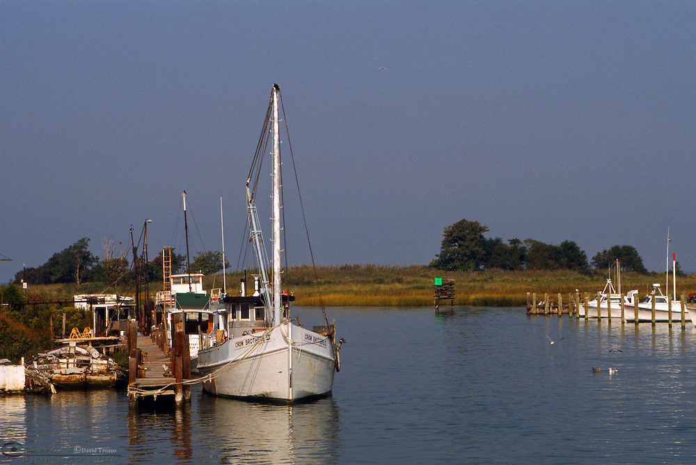 Tilghman Island, Maryland --Fishing boats take harbor at Knapps Narrows, along the Chesapeake Bay. The Bay, the largest estuary in the United States was once known for its great seafood production. Though it still yields more fish and shellfish (about 45,000 short tons) than any other estuary in the United States, the body of water is less productive than it used to be. Runoff from urban areas and farms, overharvesting, and invasion of foreign species have had an impact on the bay's health.