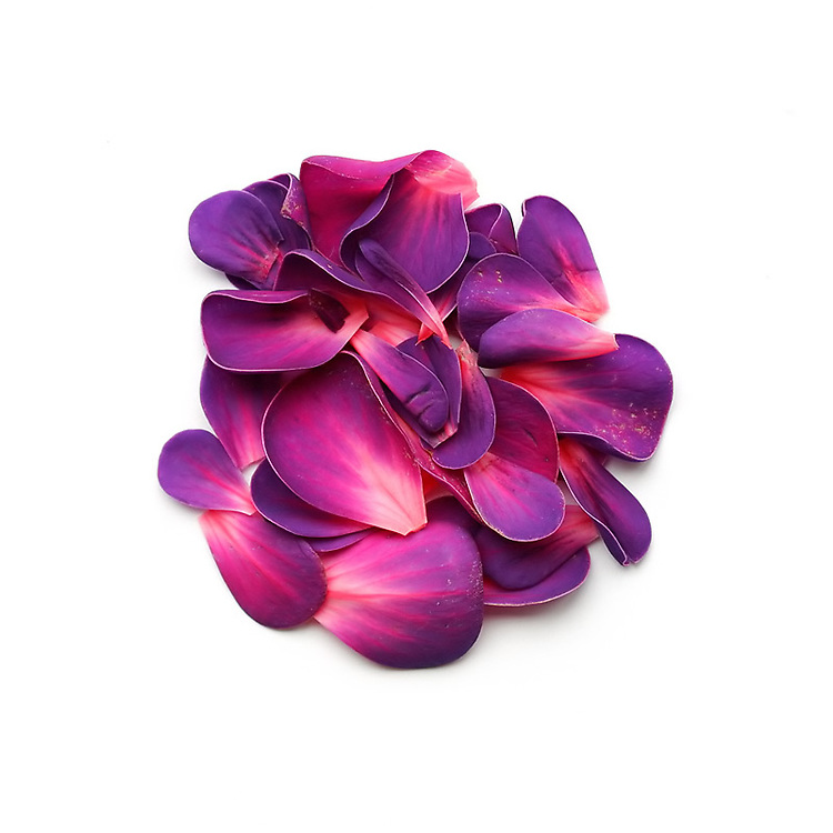 irish flowers / fa008