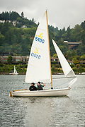 WSC dinghy fleet racing night on the Willamette River, Wednesday 21 August 2019, Willamette Sailing Club, Portland, Oregon