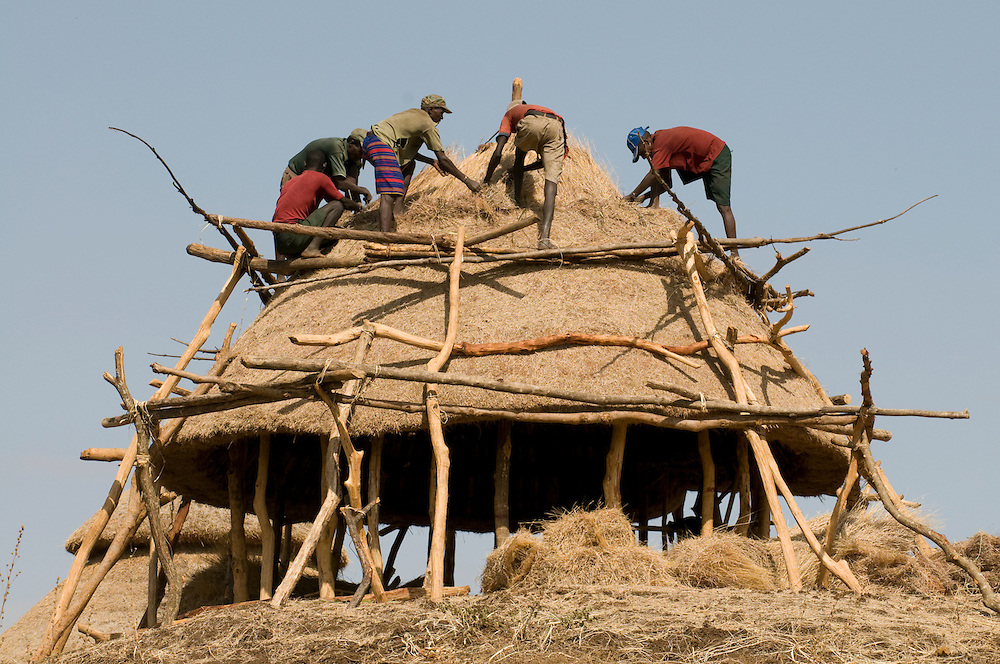 Workers working on the roof of Gezahegne Woldu´s Compund, a holy kraal ,from the Konso tribe, Omovalley,Ethiopia,Africa
