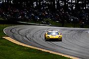 May 5, 2019: IMSA Weathertech Mid Ohio. #3 Corvette Racing Corvette C7.R, GTLM: Jan Magnussen, Antonio Garcia