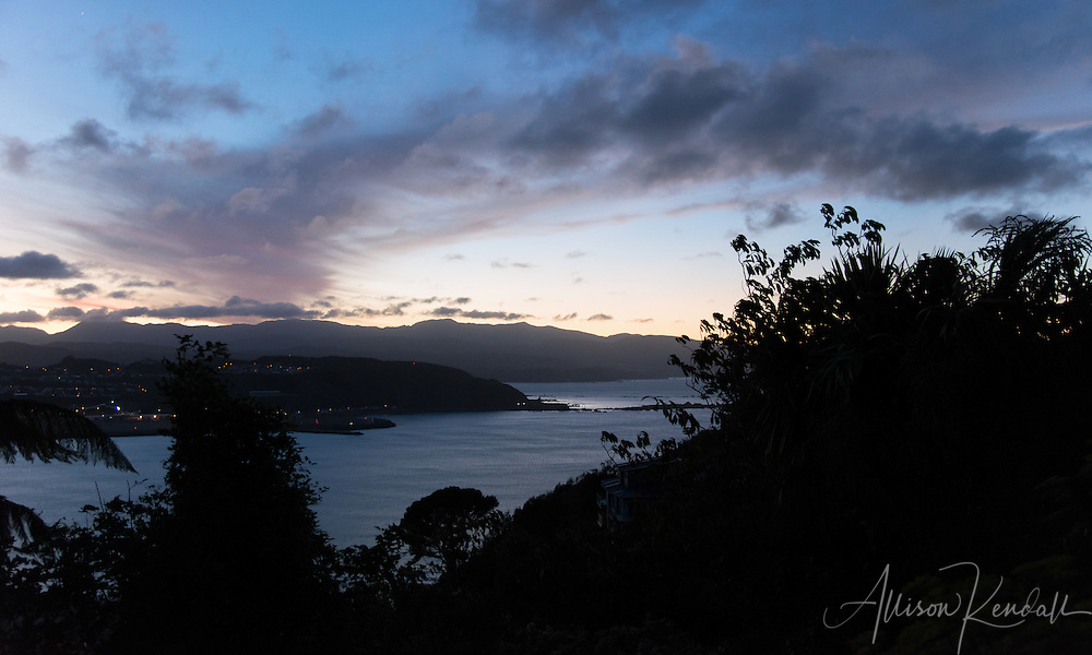 Sunrise over Lyall Bay, Wellington New Zealand