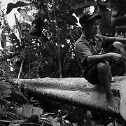 A logger rests on a felled tree in the forest of Ha Giang, Vietnam's northernmost province.