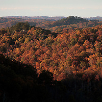 October 25, 2009 - Slade, Kentucky, USA - Trees on the rolling knobs of Natural Bridge State Park show their colors during what was expected to be the peak weekend for fall color in the area. (Credit image: © David Stephenson)
