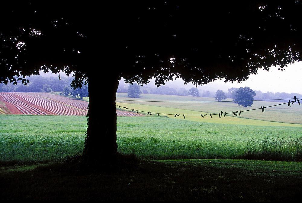 Farmland and fields