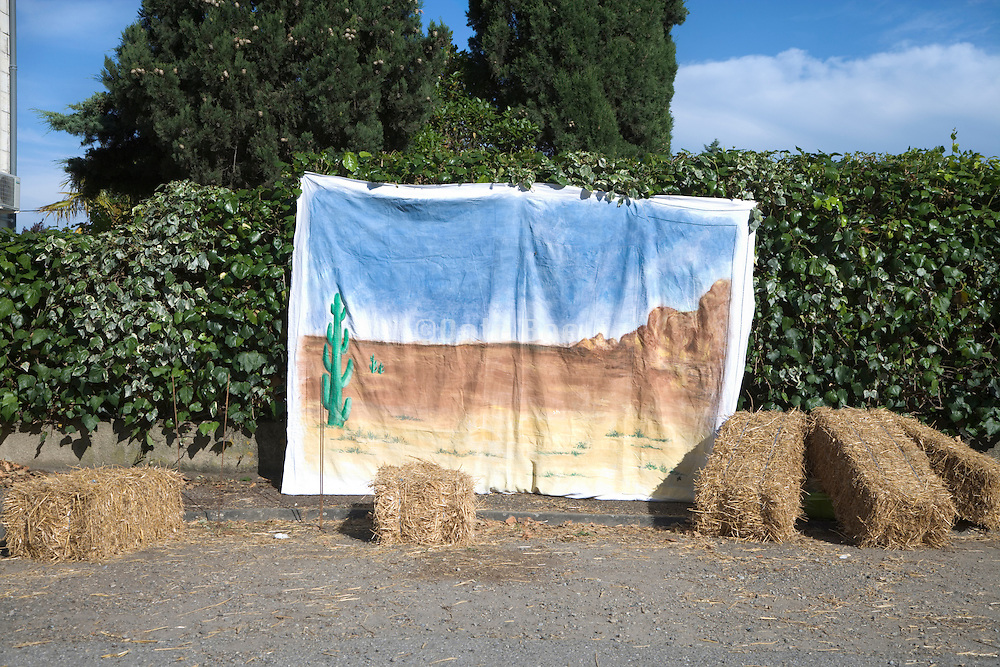 desert landscape painted on a white sheet against a lush green bush fence