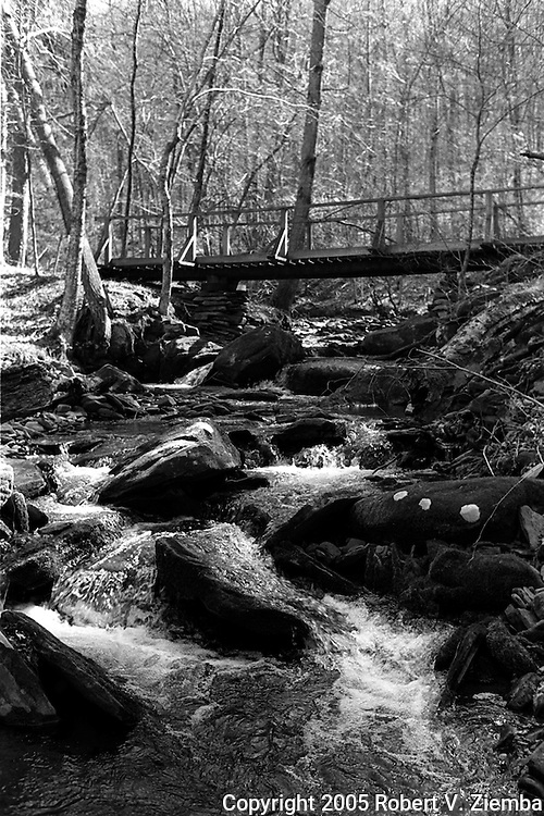 A black and white image of a foot bridge crossing over a small brook in the forest