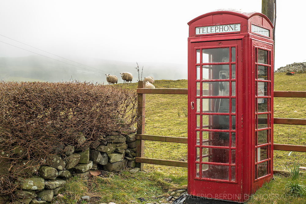 A rare iconic british phone box still stands in a field on a misty day. The presence of the phone box together as well as the use of Imperial units in road signs, is one of the evidences of being in Northern Ireland instead of the Republic of Ireland.
