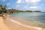 Tropical sandy beach and coconut palm trees curving around a bay, Mirissa, Sri Lanka