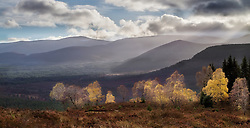 A view over the Cairngorms National Parkin autumn in Scotland