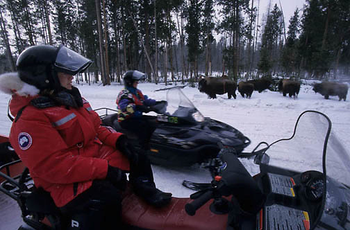 Yellowstone National Park, Snowmobiling in park. Stopping to view bison.