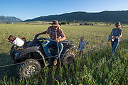 Ranchers installing an electric fence in Oregon's Wallowa Valley.