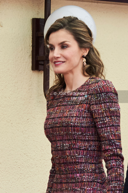 Queen Letizia of Spain attends a Working meeting at the headquarters of the Royal Board on Disability on March 21, 2017 in Madrid