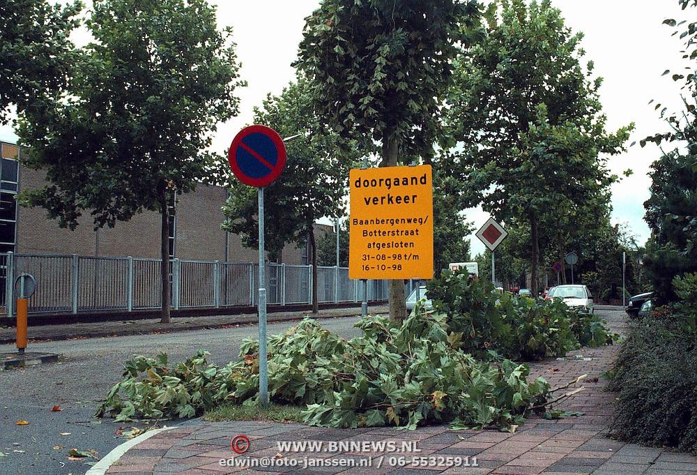 Omgevallen boom Baanbergerweg Huizen nav de stom