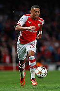 Alex Oxlade-Chamberlain of Arsenal during the UEFA Champions League match at the Emirates Stadium, London<br /> Picture by David Horn/Focus Images Ltd +44 7545 970036<br /> 27/08/2014