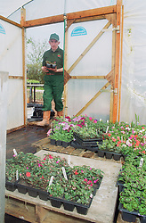 Man with Downs Syndrome at work on community allotment project entering polythene greenhouse,