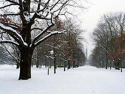 Snow covered parkland in Tiergarten Park in central Berlin in winter 2010