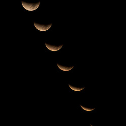 Lunar eclipse (December 2011) as viewed from Torrey Pines State Natural Reserve in Southern California.