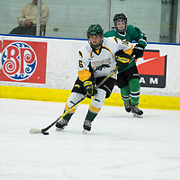 2nd year defence man Kaitlyn Crowe (16) of the Regina Cougars in action during the Women's Hockey Homeopener on October 7 at Co-operators arena. Credit: Arthur Ward/Arthur Images