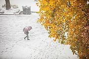 With autumn color still on trees, fresh now coats Locust Walk at the University of Pennsylvania in Philadelphia, Pennsylvania on November 15, 2018.