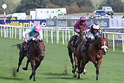 EQUILATERAL (4) ridden by Ryan Moore and trained by Charles Hills winning The Listed DC Training And Development Services Scarborough Stakes over 5f (£40,000)   during the opening day of the St Leger Festival at Doncaster Racecourse, Doncaster, United Kingdom on 11 September 2019.