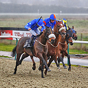 Lingfield 4th January