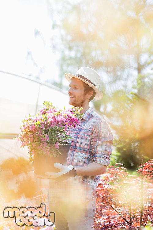 Smiling gardener looking away while holding flower pot outside greenhouse