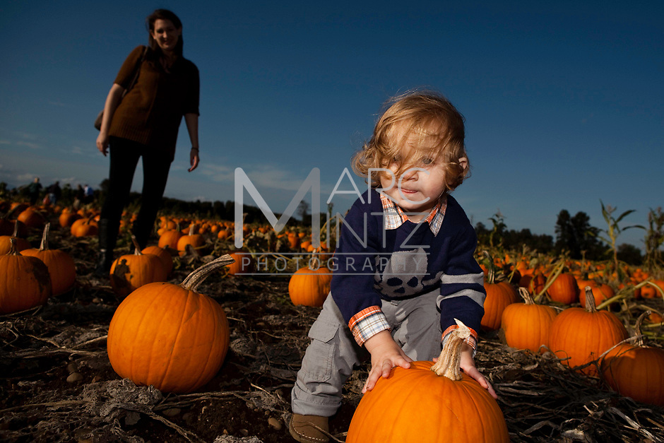 It's the great pumpkin. Eugene, Oregon