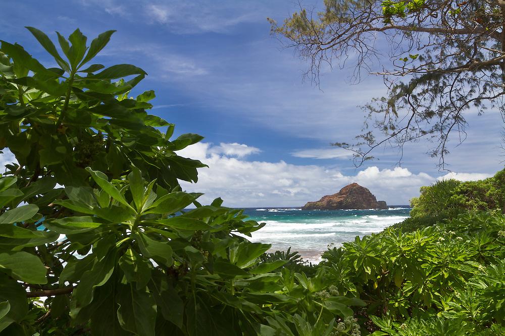 Looking through the leaves towards Hamoa Beach in Maui, Hawaii.
