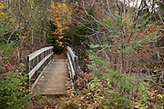 A footbridge passes from a picnic area near La Riviere du Diable (the Devil's River) at Mont Tremblant National Park in Quebec, Canada. PHOTO BY TIM SNOWPHOTO BY TIM SNOW