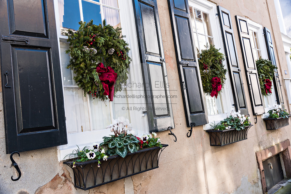 Christmas wreaths hung from windows on a historic home on Tradd Street in Charleston, SC.