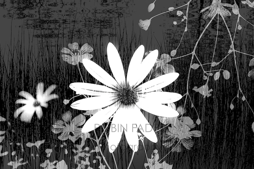 A mixture of wild flowers, water and reeds created with thoughts of a dear friend.