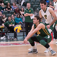 1st year libero Dryden Wall (18) of the Regina Cougars in action during men's Volleyball home game on January 21 at Centre for Kinesiology, Health and Sport. Credit: Arthur Ward/Arthur Images