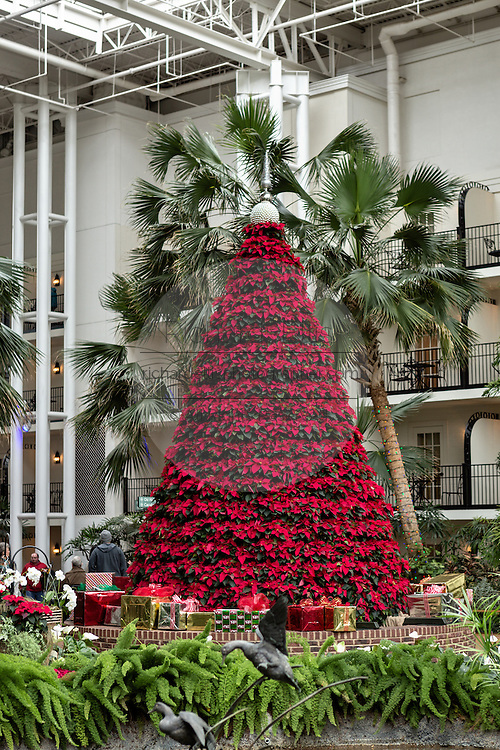 Giant Christmas tree inside the Cascades Atrium at the Gaylord Opryland Resort in Nashville, TN.