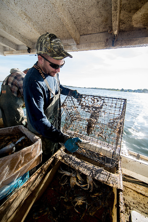 Captain Richard and Ryan Ribb pull up crab traps on the Island Lady | October 11, 2015