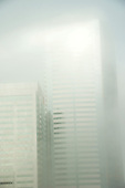 Seattle Upper Floor Fog