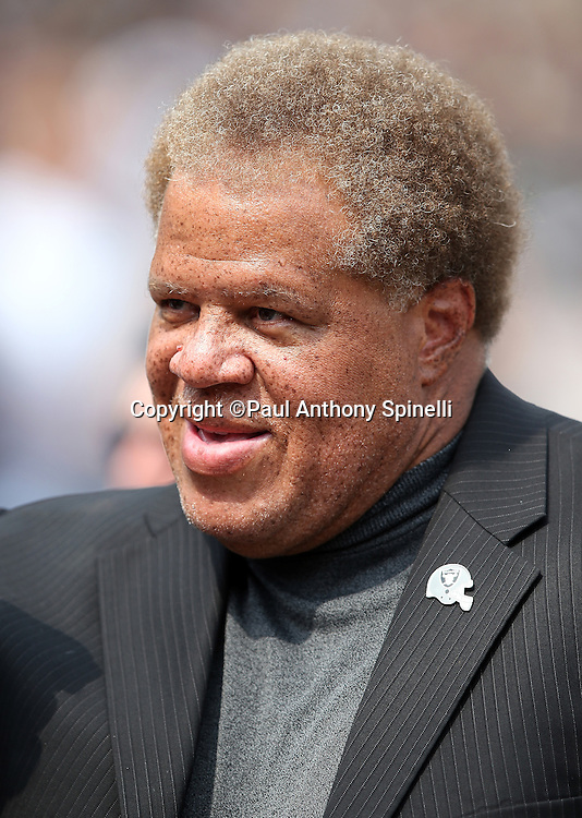 Oakland Raiders general Manager Reggie McKenzie smiles before the 2015 NFL week 1 regular season football game against the Cincinnati Bengals on Sunday, Sept. 13, 2015 in Oakland, Calif. The Bengals won the game 33-13. (©Paul Anthony Spinelli)