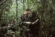 Hong Kong. last training for the Gurkhas and the Blackwatch regiment Sharp peak    / Le bataillon écossais - Black Watch -  et les Gurkhas en entraînement sur les monts Sai Kung en plein coeur de Kowloon.  / R00057/26    L940227a  /  P0000915